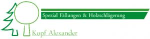 AlexanderKopf Holzschlägerung_SILBER